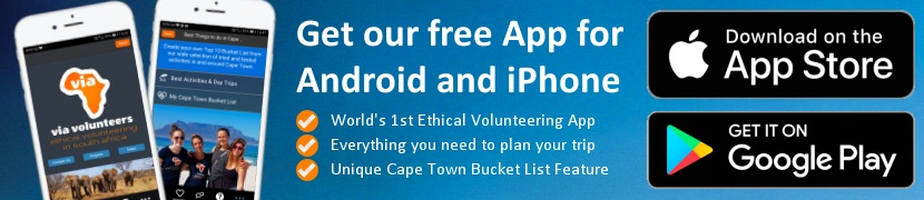 Get the Via Volunteers App