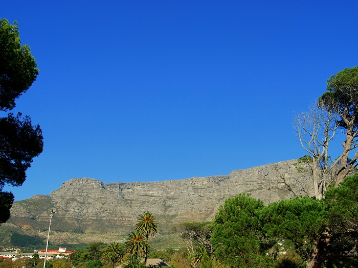 View of Table Mountain from Ashanti Lodge, our main volunteer accommodation base in Cape Town.