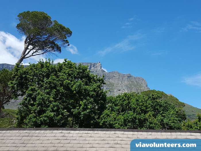 View of Table Mountain from the stairs at Ashanti Lodge.