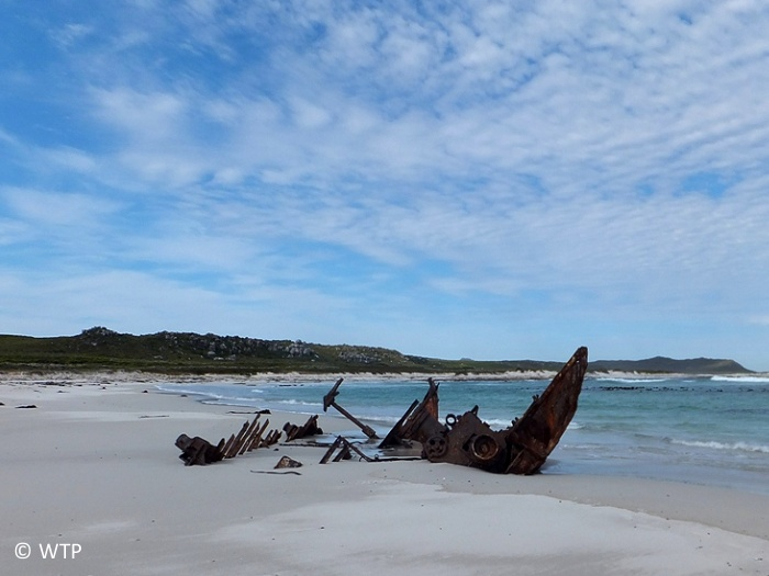 Evidence of the point's many past shipwrecks lie scattered along the coast, from west to east, and can still be seen today from a number of shipwreck hiking trails. This wreck is situated at Olifantsbos.