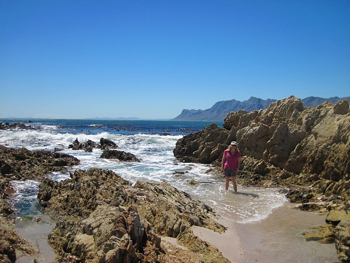 Rooi Els is on the eastern shore of False Bay, next to the Kogelberg Biosphere Resesrve.