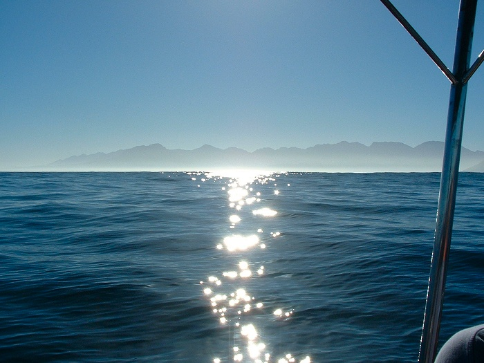 Magnificent glistening sun on the False Bay sea water.