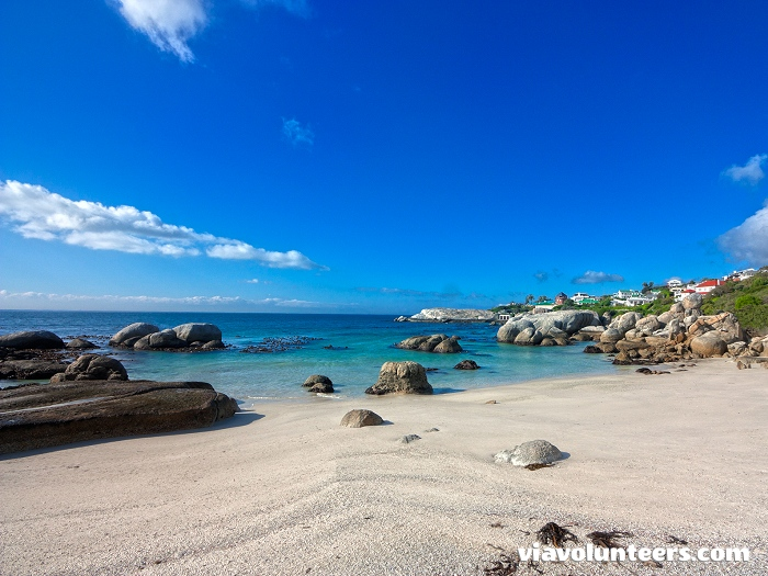 Boulders Beach is situated near Simon's Town in False Bay between Fish Hoek and Cape Point.