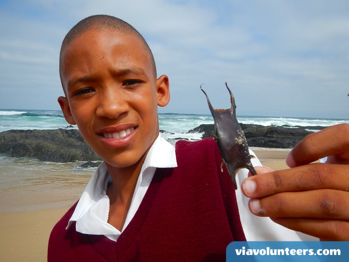 A pupil from a local school having a look at  an empty shark case.