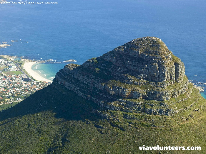 An aerial view of Lion's Head which is covered in fynbos (indigenous Cape vegetation), with an unusually rich biodiversity that supports a variety of small animals.