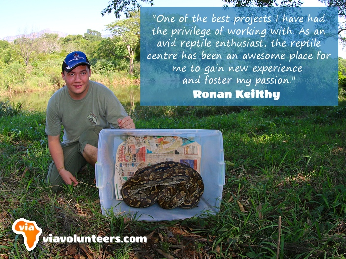 Volunteer Review - Ronan volunteered at the Reptile Conservation Project in Limpopo, South Africa.