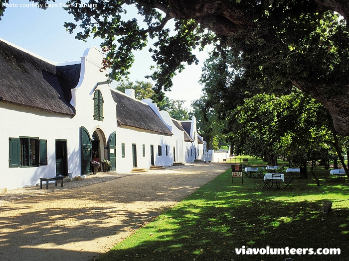 Boschendal Wine Estate  is one of the oldest wine estates in South Africa and is located between Franschhoek and Stellenbosch.